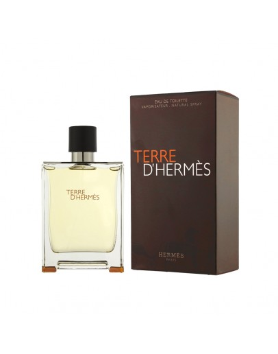 Terre D Hermes - Hermes (άρωμα τύπου)